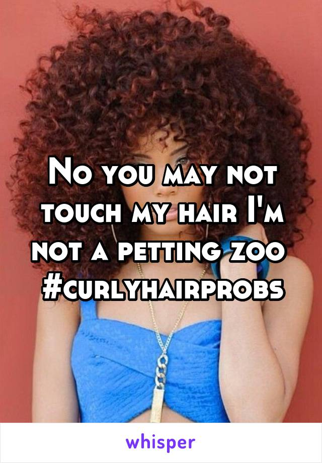 No you may not touch my hair I'm not a petting zoo  #curlyhairprobs