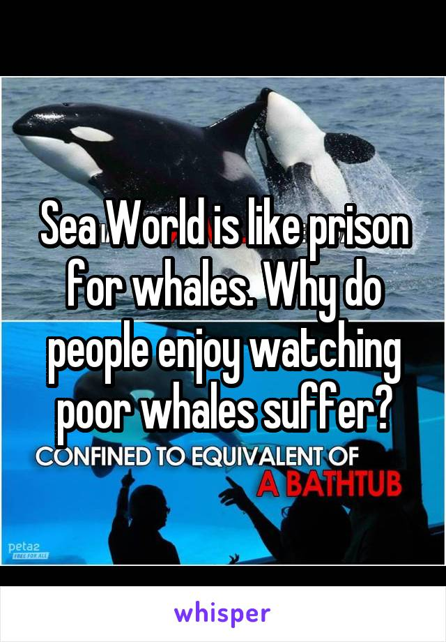 Sea World is like prison for whales. Why do people enjoy watching poor whales suffer?