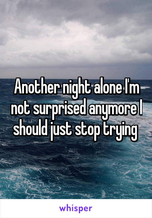 Another night alone I'm not surprised anymore I should just stop trying