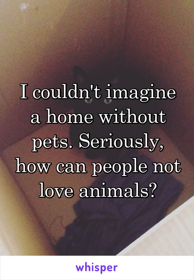 I couldn't imagine a home without pets. Seriously, how can people not love animals?