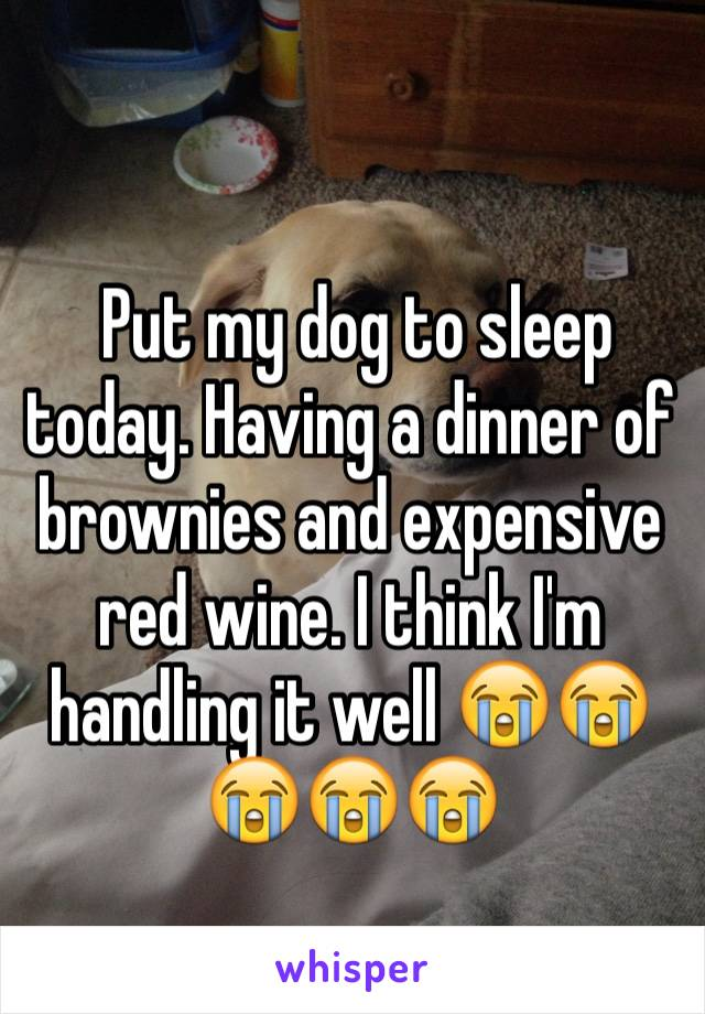 Put my dog to sleep today. Having a dinner of brownies and expensive red wine. I think I'm handling it well 😭😭😭😭😭