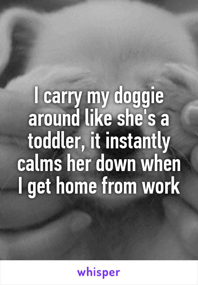 I carry my doggie around like she's a toddler, it instantly calms her down when I get home from work