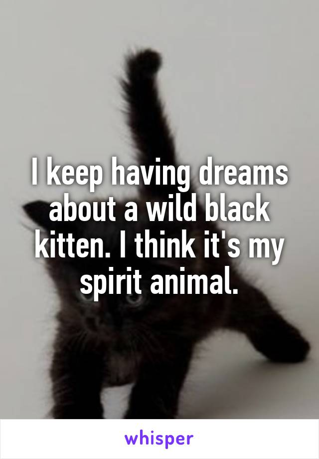 I keep having dreams about a wild black kitten. I think it's my spirit animal.