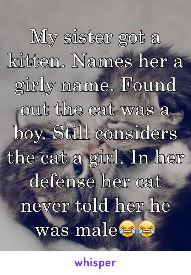 My sister got a kitten. Names her a girly name. Found out the cat was a boy. Still considers the cat a girl. In her defense her cat never told her he was male😂😂
