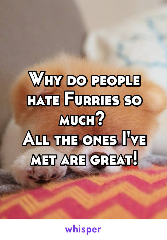 Why do people hate Furries so much?  All the ones I've met are great!