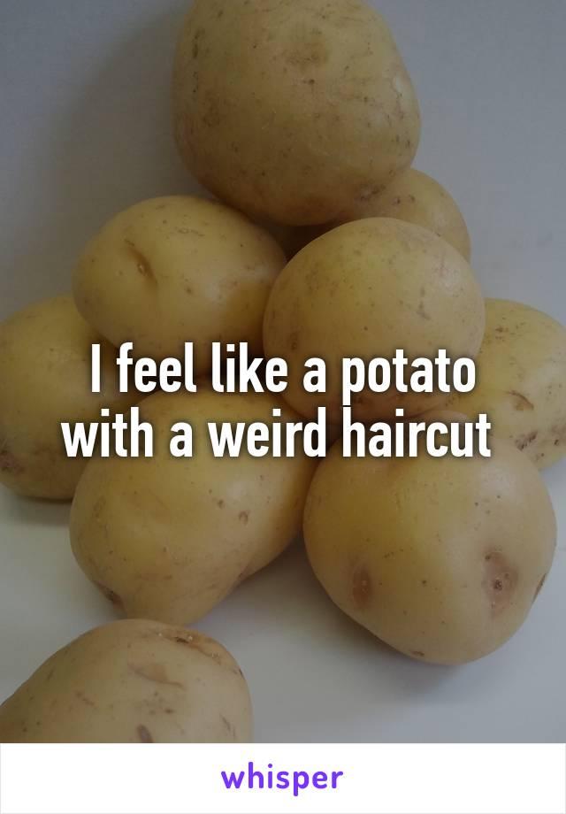 I Feel Like A Potato With A Weird Haircut