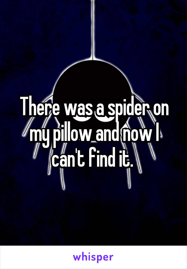 There was a spider on my pillow and now I can't find it.