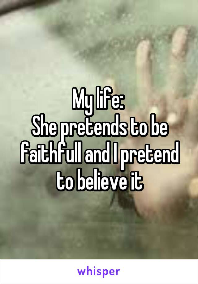 My life:  She pretends to be faithfull and I pretend to believe it