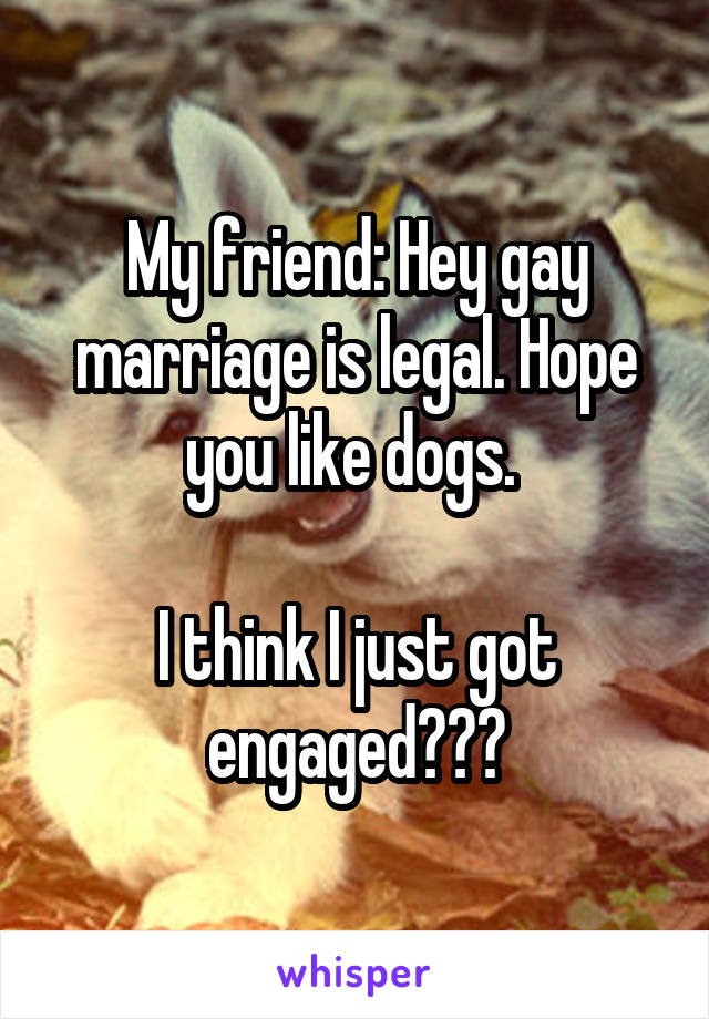 My friend: Hey gay marriage is legal. Hope you like dogs.   I think I just got engaged???