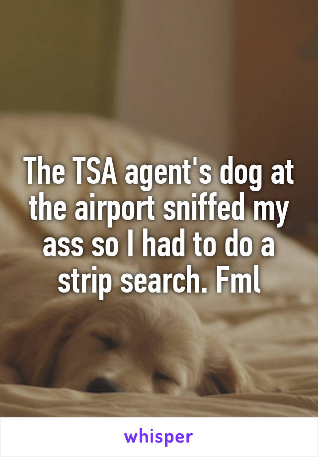 The TSA agent's dog at the airport sniffed my ass so I had to do a strip search. Fml