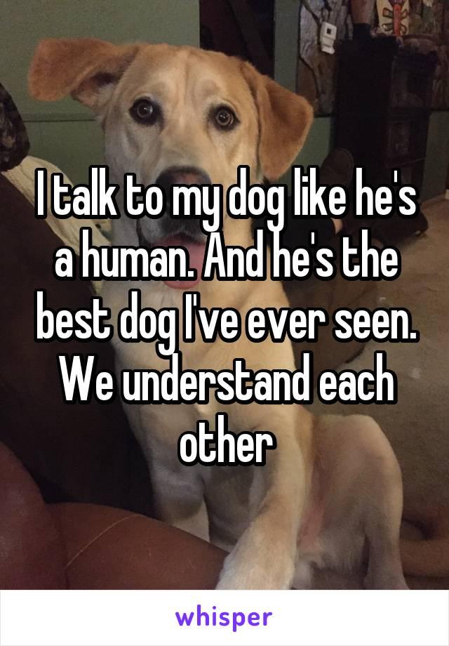 I talk to my dog like he's a human. And he's the best dog I've ever seen. We understand each other