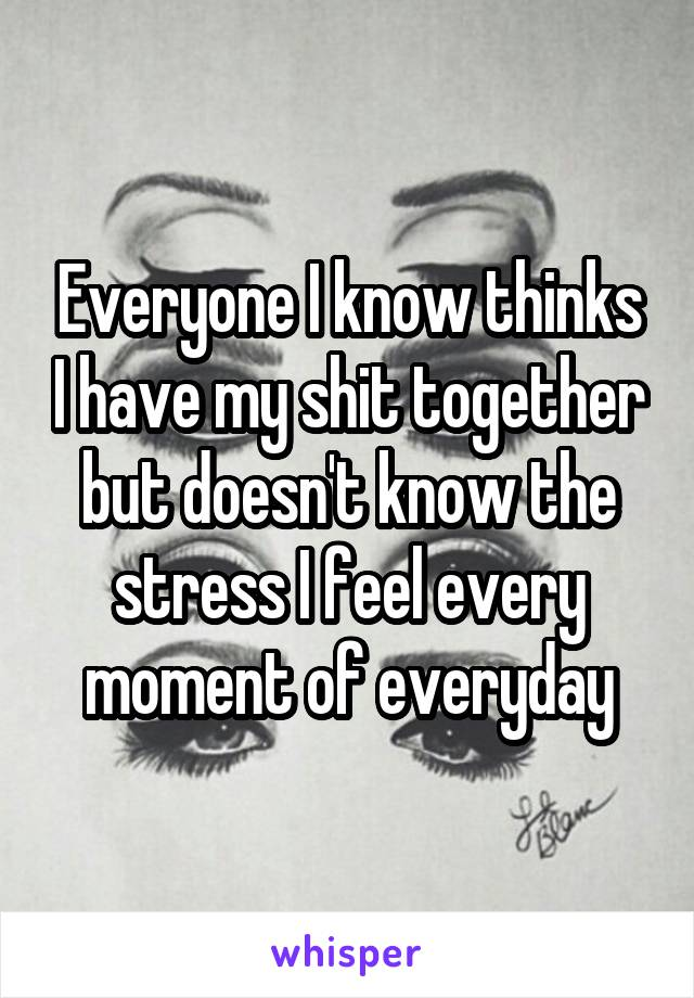 Everyone I know thinks I have my shit together but doesn't know the stress I feel every moment of everyday