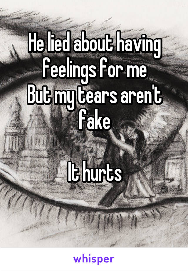 He lied about having feelings for me But my tears aren't fake  It hurts