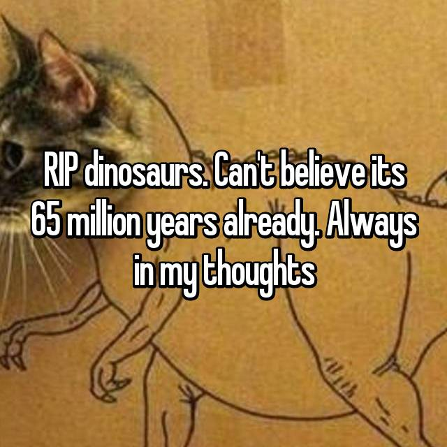 RIP dinosaurs. Can't believe its 65 million years already. Always in my thoughts