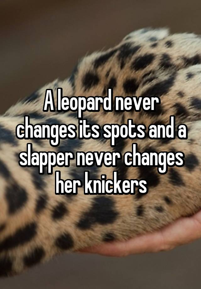 Like The Le States Leopard Never Changes Its Spots It Is Very True These Creatures Dont Change And Are Diffe From All Others Even Own