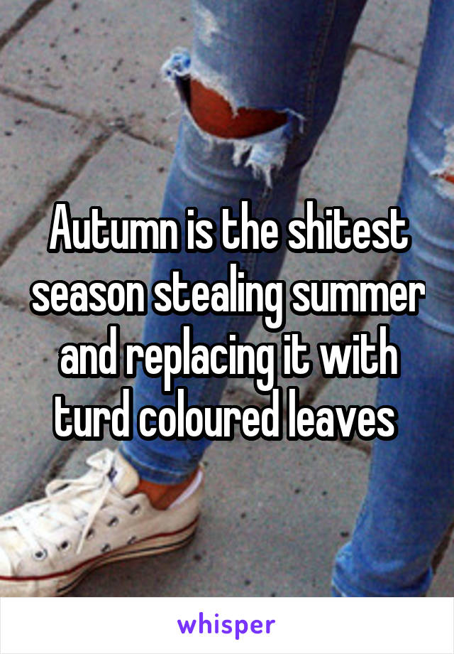 Autumn is the shitest season stealing summer and replacing it with turd coloured leaves