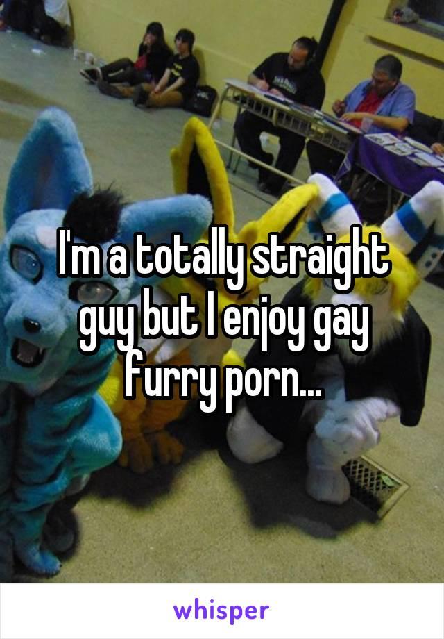I'm a totally straight guy but I enjoy gay furry porn...