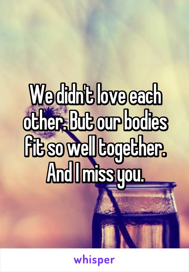 We didn't love each other. But our bodies fit so well together. And I miss you.