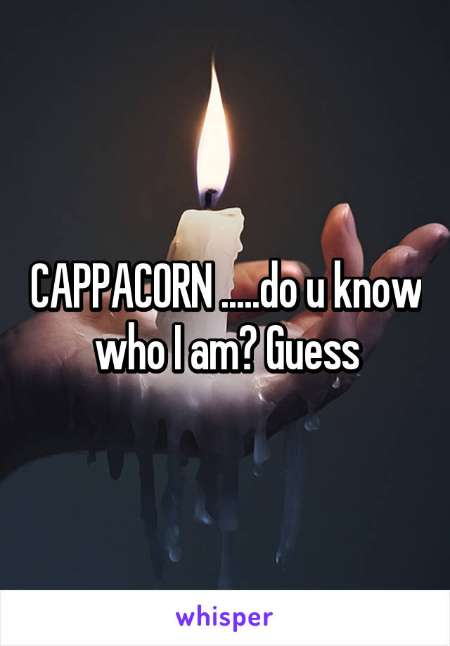 CAPPACORN .....do u know who I am? Guess