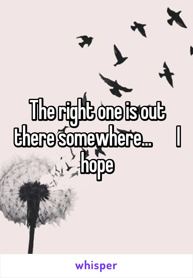 The right one is out there somewhere...       I hope