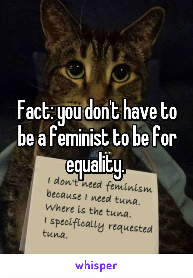 Fact: you don't have to be a feminist to be for equality.