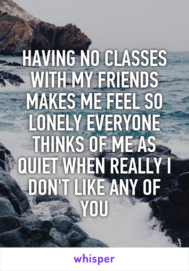 HAVING NO CLASSES WITH MY FRIENDS MAKES ME FEEL SO LONELY EVERYONE THINKS OF ME AS QUIET WHEN REALLY I DON'T LIKE ANY OF YOU