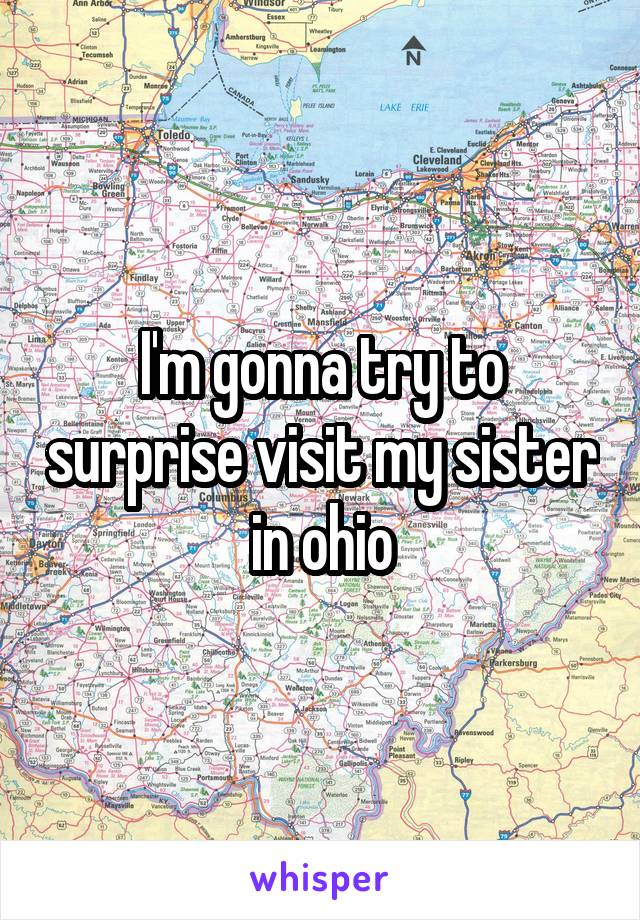 I'm gonna try to surprise visit my sister in ohio