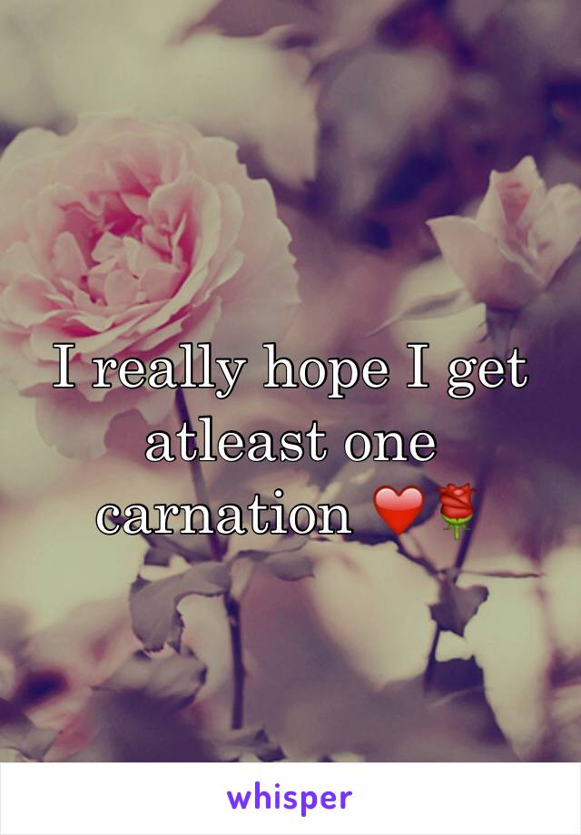 I really hope I get atleast one carnation ❤️🌹