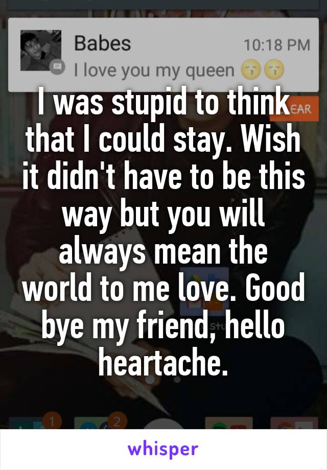 I was stupid to think that I could stay. Wish it didn't have to be this way but you will always mean the world to me love. Good bye my friend, hello heartache.