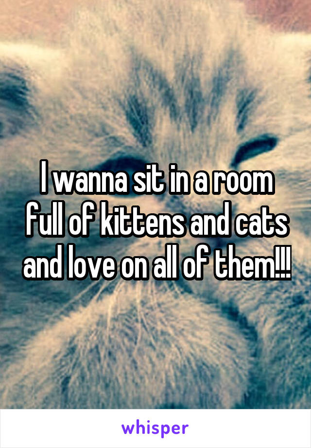 I wanna sit in a room full of kittens and cats and love on all of them!!!