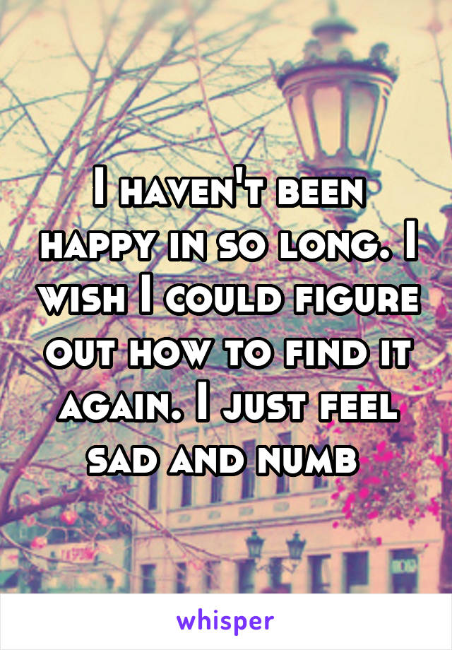 I haven't been happy in so long. I wish I could figure out how to find it again. I just feel sad and numb