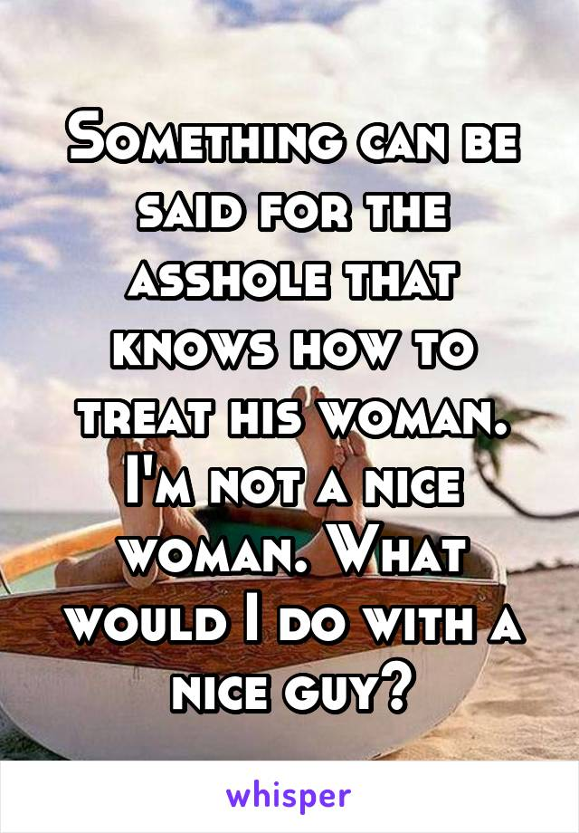 Something can be said for the asshole that knows how to treat his woman. I'm not a nice woman. What would I do with a nice guy?