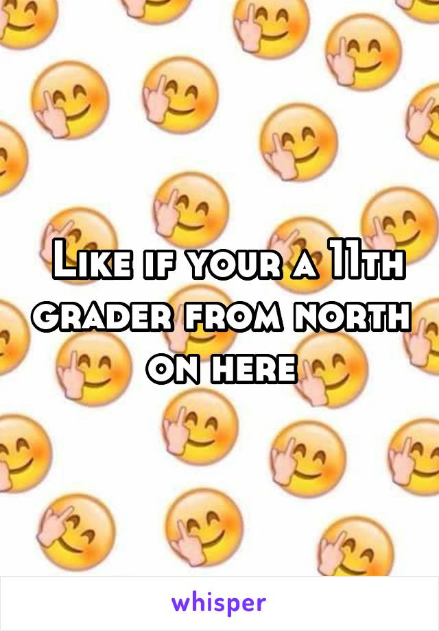 Like if your a 11th grader from north on here