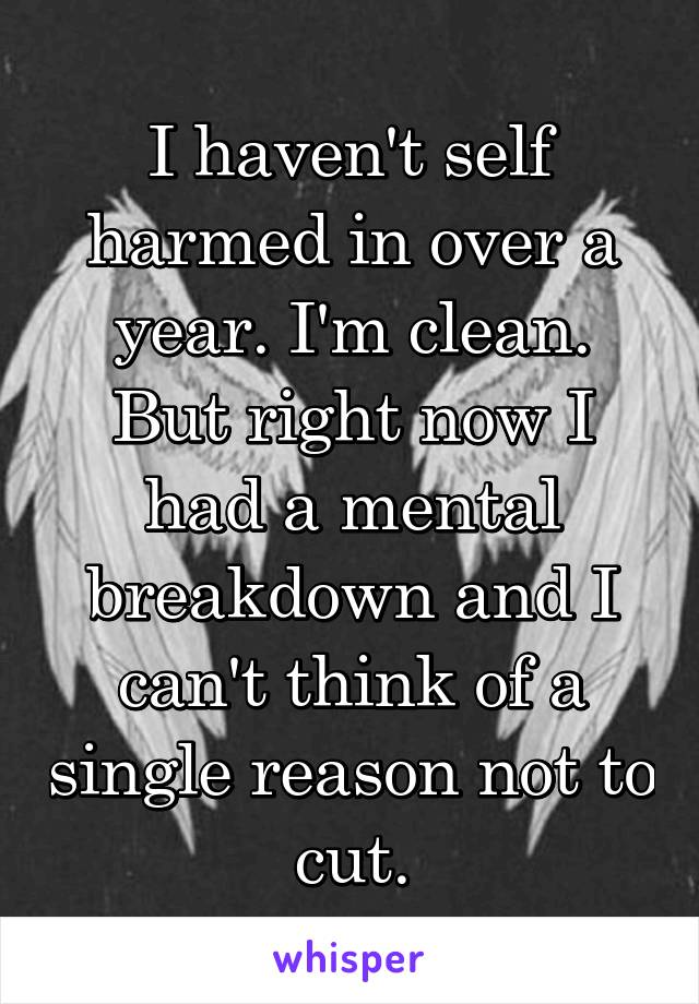 I haven't self harmed in over a year. I'm clean. But right now I had a mental breakdown and I can't think of a single reason not to cut.