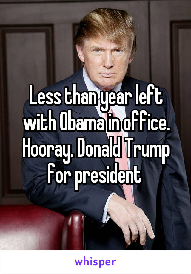 Less than year left with Obama in office. Hooray. Donald Trump for president