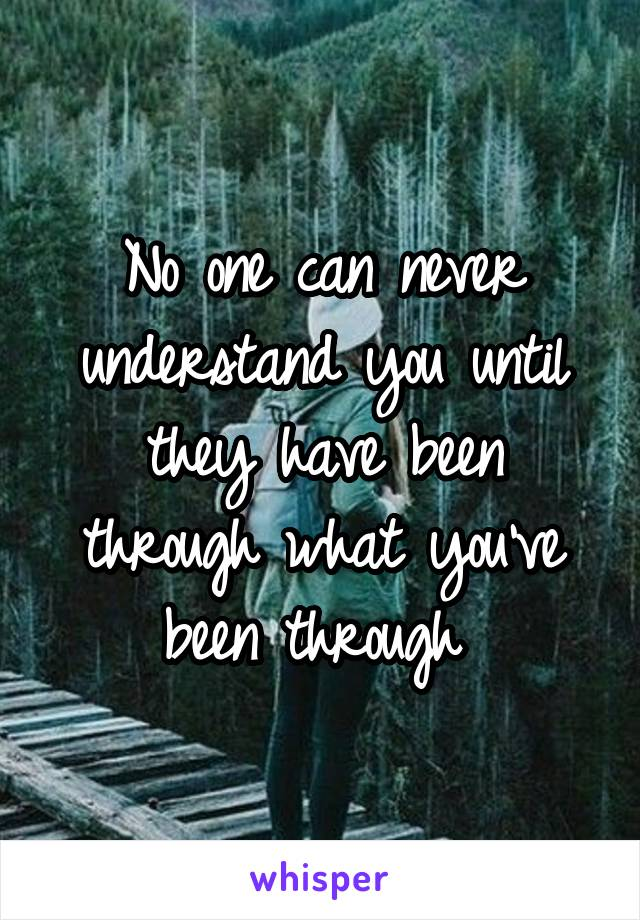 No one can never understand you until they have been through what you've been through