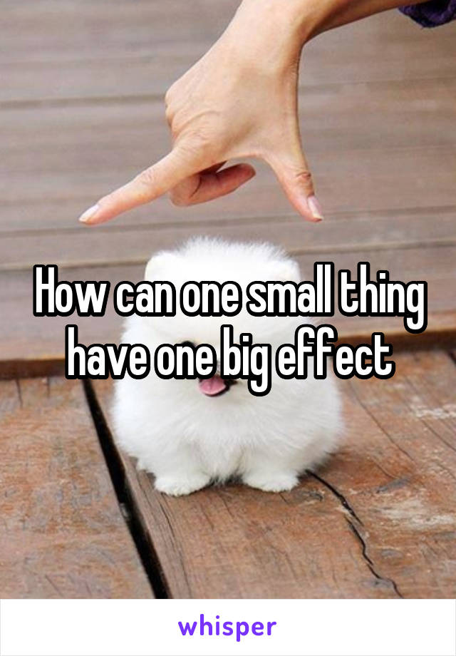 How can one small thing have one big effect