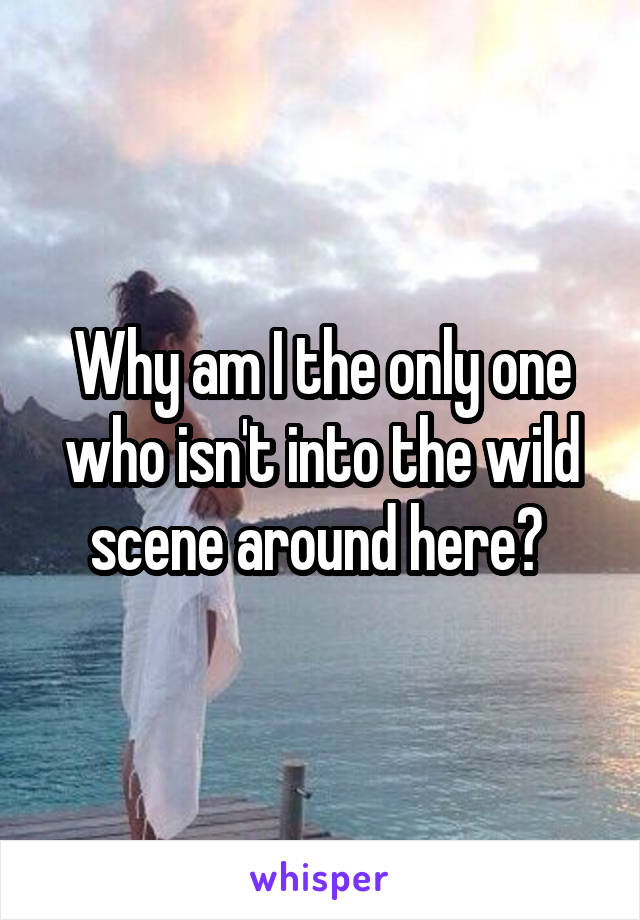 Why am I the only one who isn't into the wild scene around here?