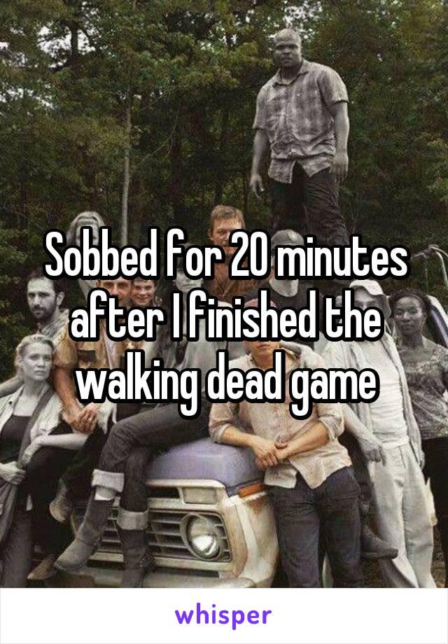Sobbed for 20 minutes after I finished the walking dead game