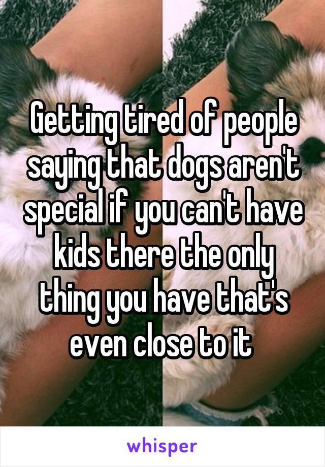 Getting tired of people saying that dogs aren't special if you can't have kids there the only thing you have that's even close to it