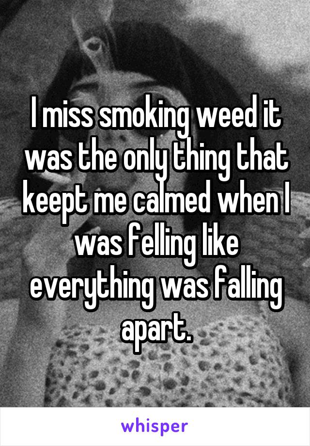 I miss smoking weed it was the only thing that keept me calmed when I was felling like everything was falling apart.