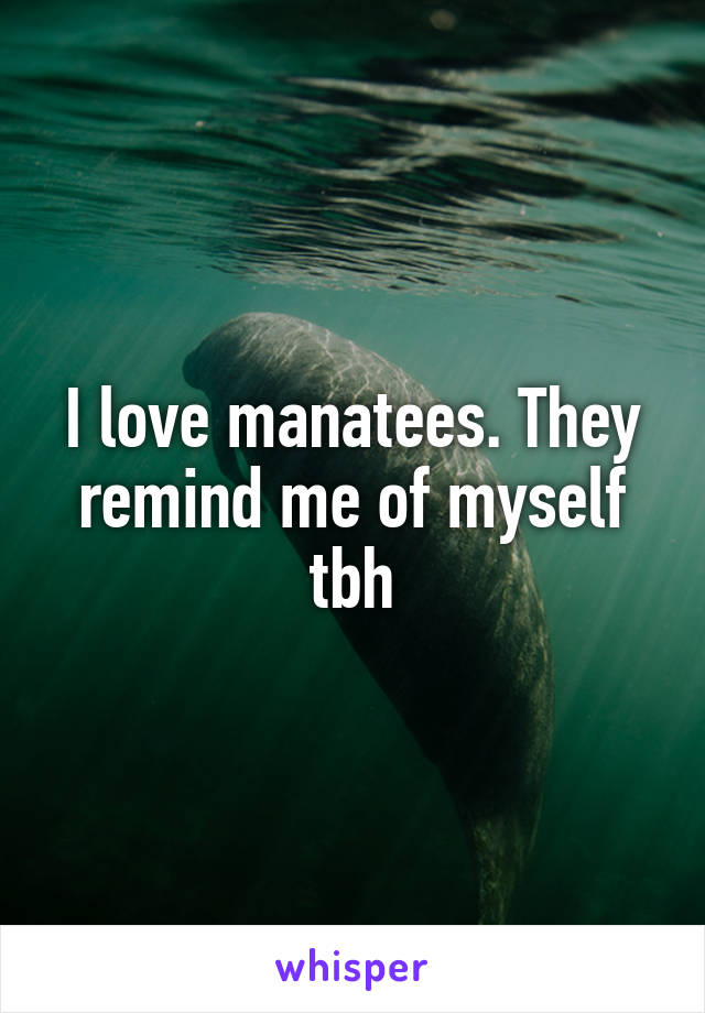 I love manatees. They remind me of myself tbh
