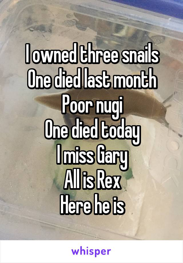 I owned three snails One died last month Poor nugi One died today I miss Gary All is Rex Here he is