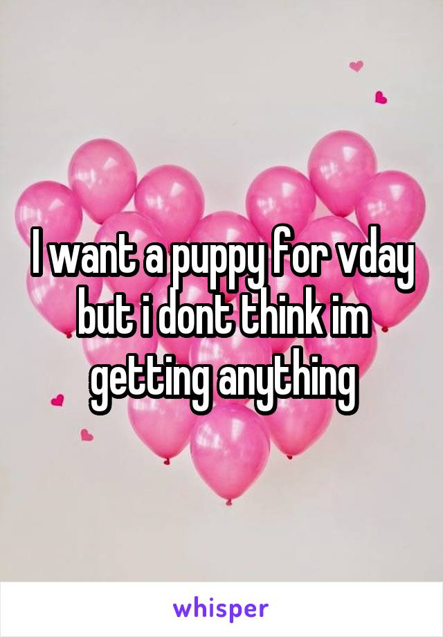 I want a puppy for vday but i dont think im getting anything
