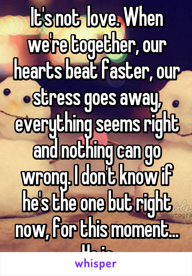 It's not  love. When we're together, our hearts beat faster, our stress goes away, everything seems right and nothing can go wrong. I don't know if he's the one but right now, for this moment... He is