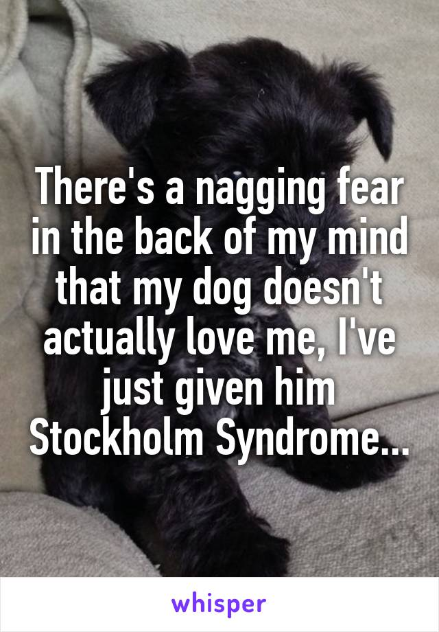 There's a nagging fear in the back of my mind that my dog doesn't actually love me, I've just given him Stockholm Syndrome...
