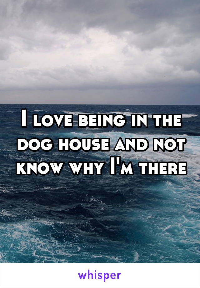 I love being in the dog house and not know why I'm there