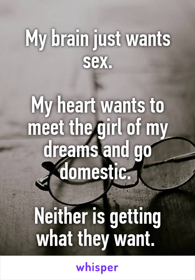 My brain just wants sex.  My heart wants to meet the girl of my dreams and go domestic.   Neither is getting what they want.