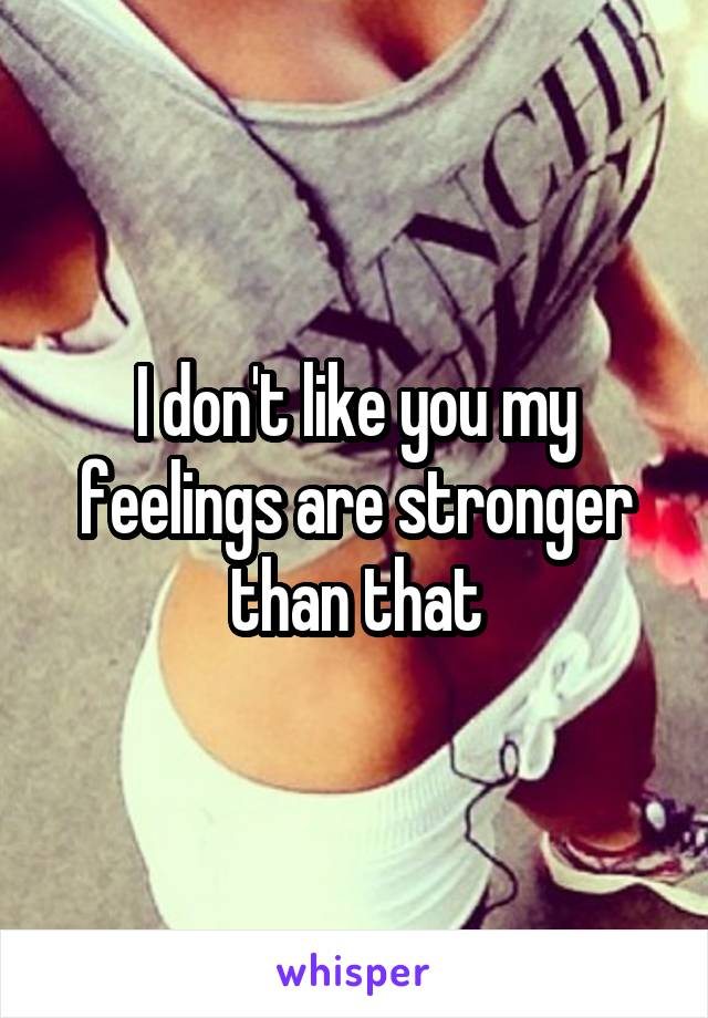 I don't like you my feelings are stronger than that