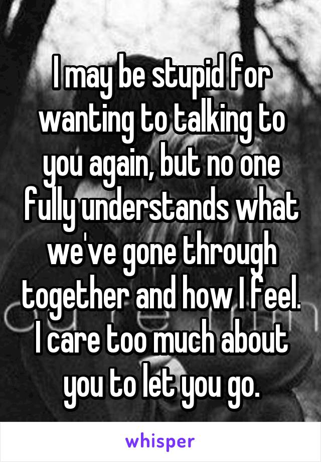 I may be stupid for wanting to talking to you again, but no one fully understands what we've gone through together and how I feel. I care too much about you to let you go.